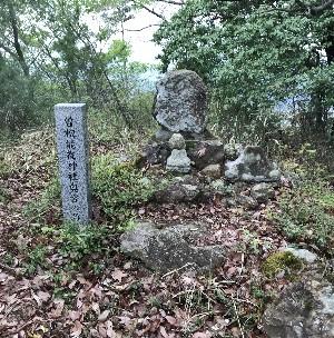 http://fuushi.k-pj.info/jpgbIF/IFsirai/IFsirai-32sokino_oku.jpg