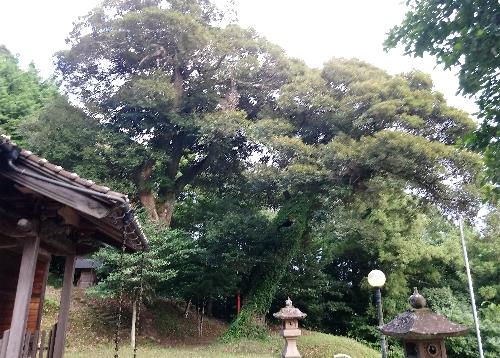 https://fuushi.k-pj.info/jpgj/simane/unnan-c/daitou-t/ninnaji/suwaJ/suwaJ-b03.jpg