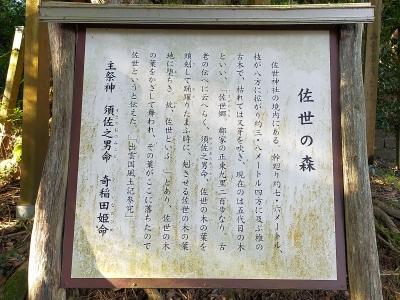 https://fuushi.k-pj.info/jpgj/simane/unnan-c/daitou-t/simosase/saseJ/saseJ-d02.jpg