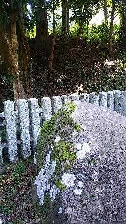 http://fuushi.k-pj.info/jpgj/simane/unnan-c/mitoya-t/takuwa/iisi-j/iisi-04.jpg